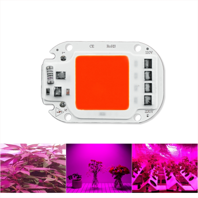 LED Grow COB Chip Phyto Lamp Full Spectrum 220V 110V 20W 30W 50W DIY For Indoor Plant Seedling Grow And Flower Growth Fitolamp