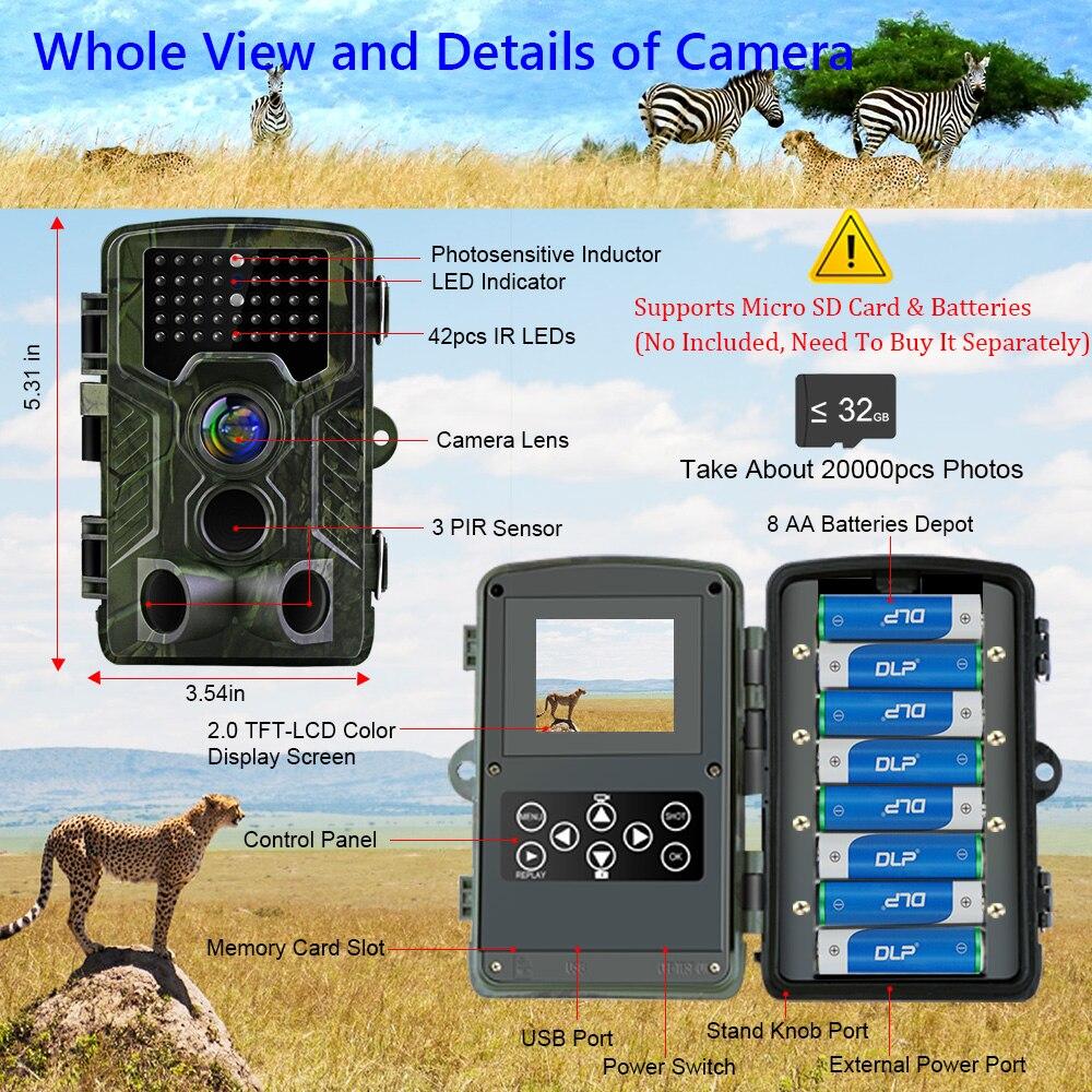 noturna infared câmera para animais foto armadilhas