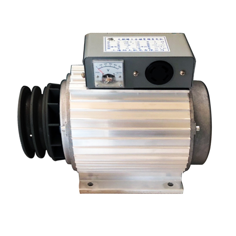 Conversion-Generator Permanent-Magnet-Frequency Single-Phase Brushless 220V 5kw Earth