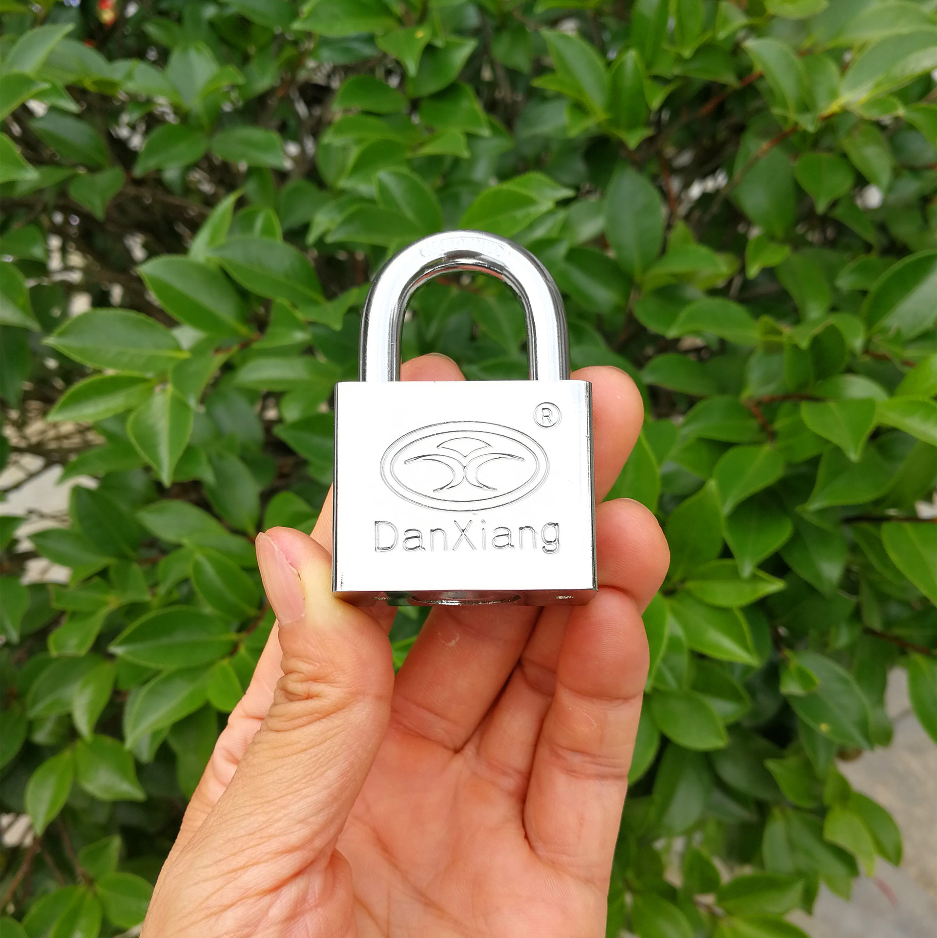 [Dan Xiang Lock Industry] Pujiang Manufacturers Wholesale Supply 50mm System Open Padlock Cargo Cabin Lock Through Open Safety P
