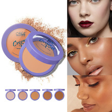 Natural Face Powder Mineral Foundations Oil-control Brighten Concealer Whitening Make Up Pressed Powder With Puff