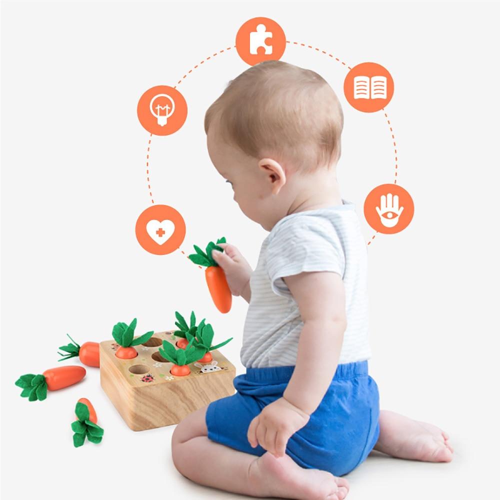 Развивающие игрушки Монтессори, набор деревянных блоков, способность вытягивать морковь, форма Alpinia, развивающие игрушки, подарок для ребен...