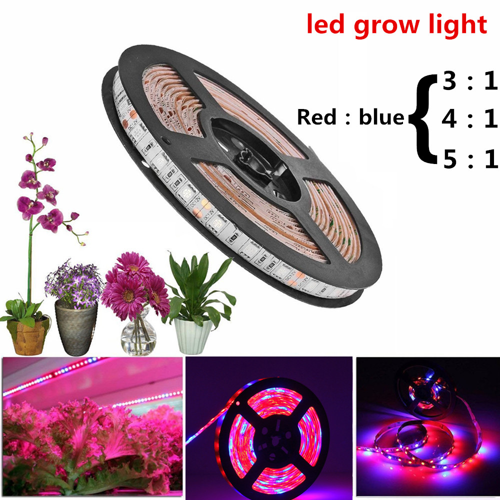 Led Grow Light Strip Full Spectrum Flower Plant The Seeds Phyto Growth Lamp DC 12V For Indoor Greenhouse Hydroponic Grows Lights