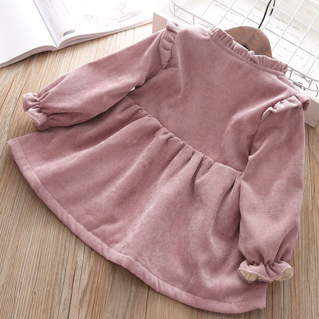 Baby Clothing 2019 Fall Winter Wear Thick warm Baby Girls Princess Dress Velvet long-sleeve dress Party Dresses Baby Clothes 3