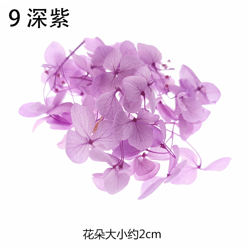 0 5 lot High Quality Natural Fresh Preserved Flowers Dried Hydrangea Flower Head For DIY Real Eternal Life Flowers Material in Jewelry Tools Equipments from Jewelry Accessories