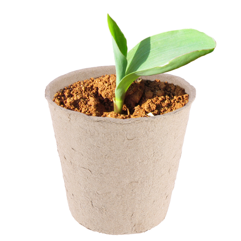 10PC Seedlings Cup Plants Growing Potted Cups Flower Bonsai Home Gardening Tool