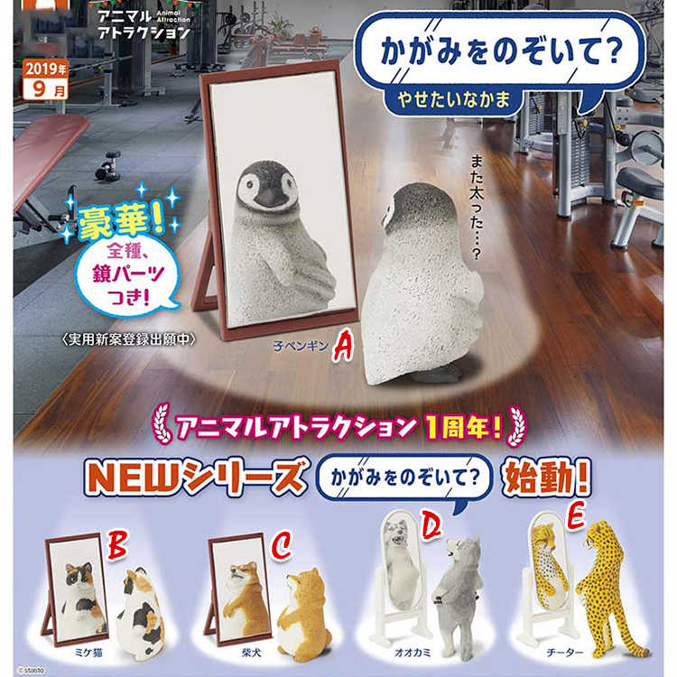 Japanese original capsule toy Cute fun Fat animal in the mirror penguin cat cheetah wolf shiba Inu figures collectible gift