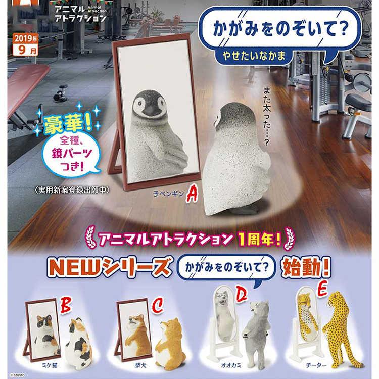 Brinquedo cápsula original japonês bonito diversão animal gordo no espelho pinguim gato chita lobo shiba inu figuras colecionáveis presente