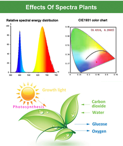Image 5 - לגדול אורות, 220V 75W 152LED מתקפל 2 מצב, מתכוונן מתכווננת Sunlike מלא ספקטרום & אדום/כחול ספקטרום צמח גידול אורות
