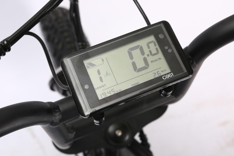 /500w/750w/1000w 250w V-b08m26*4.0 Big Power Fat Tire Electric Bike/cruiser Electric Bike/electric Bicycle 5
