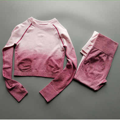 New Sports Wear Women Gym Clothing Yoga Set Seamless Leggings Sports Bra Long Sleeve Fitness Crop  Top Women's Sports Pants