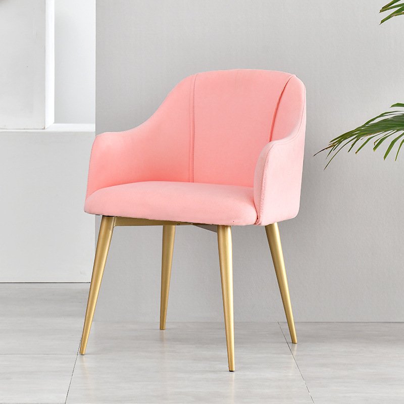 Northern Europe Dining Chair Modern Concise Household Restaurant Cafe Chair Light Luxurious Ins Aden Chair