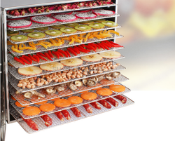 10 Layer Commercial Professional Fruit Food Dryer Stainless Steel Food Fruit Vegetable Pet Meat Air Dryer Electric Dehydrator
