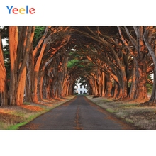 Yeele Forest Paths Trees Trail Woods Landscape Photography Vinyl Backdrops Personalized Photographic Background For Photo Studio white snow forest trees photo studio photography backdrops vinyl foto background