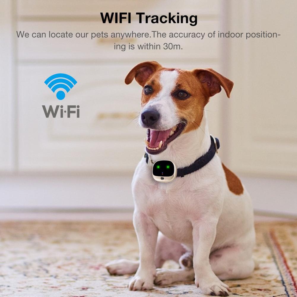 V43 домашнее животное 4G gps Персональный трекер RF V43 мини gps домашнее животное трекер 4G LTE 3g WCDMA 2G GSM Лучшая Собака Водонепроницаемый gps трекер с бесплатным приложением - 2