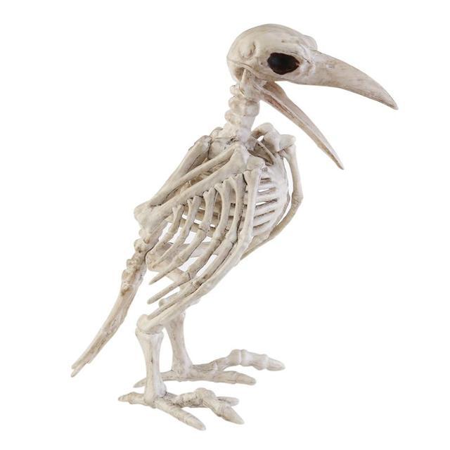Crazy Bone Skeleton Raven Plastic Animal Skeleton Bones Horror Halloween Decoration Halloween Prop Bird Crow Skeleton Decoration