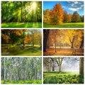 Laeacco зеленая трава дерево утро Солнечный свет лесной парк природные живописные фото фотообои для фотостудии