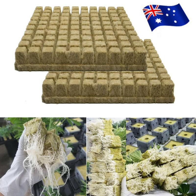 100 Cubes Grodan Rockwool Sheet Block Propagation Cloning Seed Raising Hydroponic grow plug one pack Grodan 1 Starter Plugs Cube