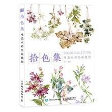 Цвета коллекции красивыми растениями цветок, акварельные иллюстрации живопись графика Искусство книги для начинающих