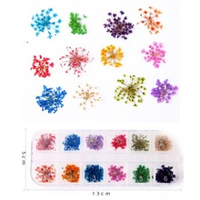 Dried Flower Nail Decoration Natural Floral Sticker 3D Art Tips Accessories