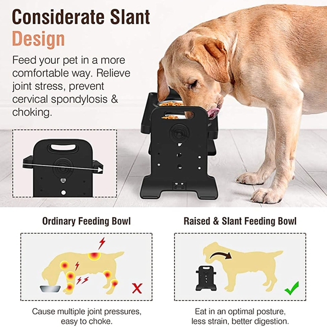 Anti-Slip Elevated Double Dog Bowl Adjustable Height Pet Feeding Dish Stainless Steel Foldable Food Water Feeder 6