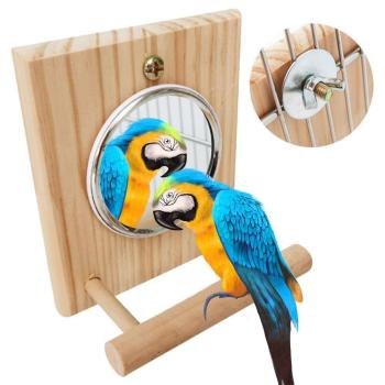 10 * 12 Cm Mirror Stand Pet Funny Parrot Bird Toy Mirror Toy Accessories  for Parrot Bird  Pet Parrot  Cage Pet Supplies 3