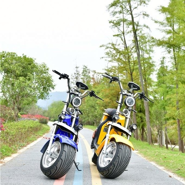 2000W 20AH Two Wheels Cost-Effective Unique Design Best Quality Popular Citycoco Electric Scooter  Electric Motorcycle 3