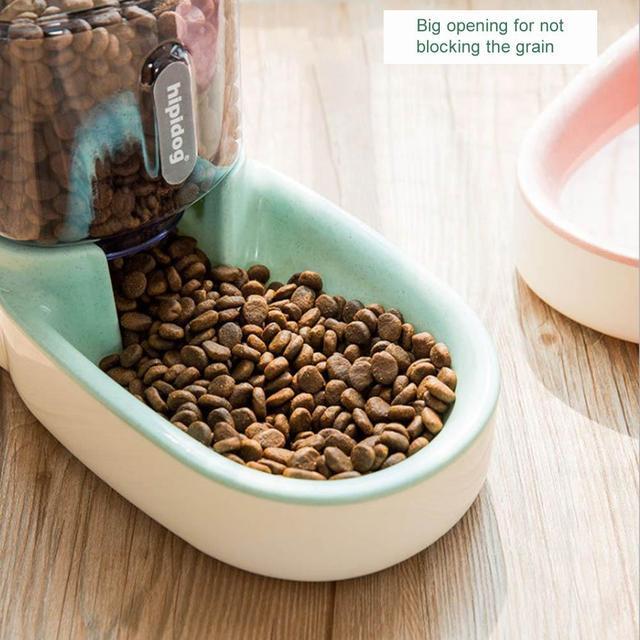 Automatic Water Feeder 3.8L Food Storage Bucket & Cat Water Fountain Dispenser 5