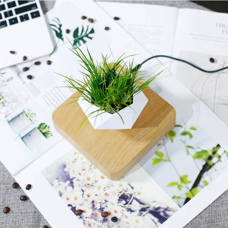 Super Magnetic Floating Planter For Home and Office Decor