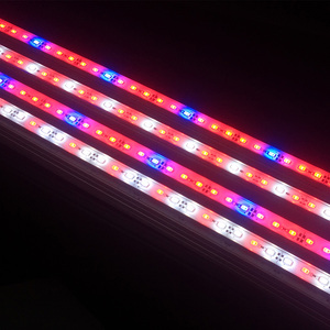 Image 2 - 5 قطعة DC12V 0.5 متر 5730 IP68 مقاوم للماء مصباح إضاءة Led للنمو بار جامدة قطاع الأحمر الأزرق 5:1 ل حوض السمك الأخضر البيت المائية النبات الأبيض