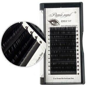 Image 1 - Klasik kirpik uzantıları vizon bireysel Lashes el yapımı profesyoneller yumuşak B C CC D DD ücretsiz hızlı kargo