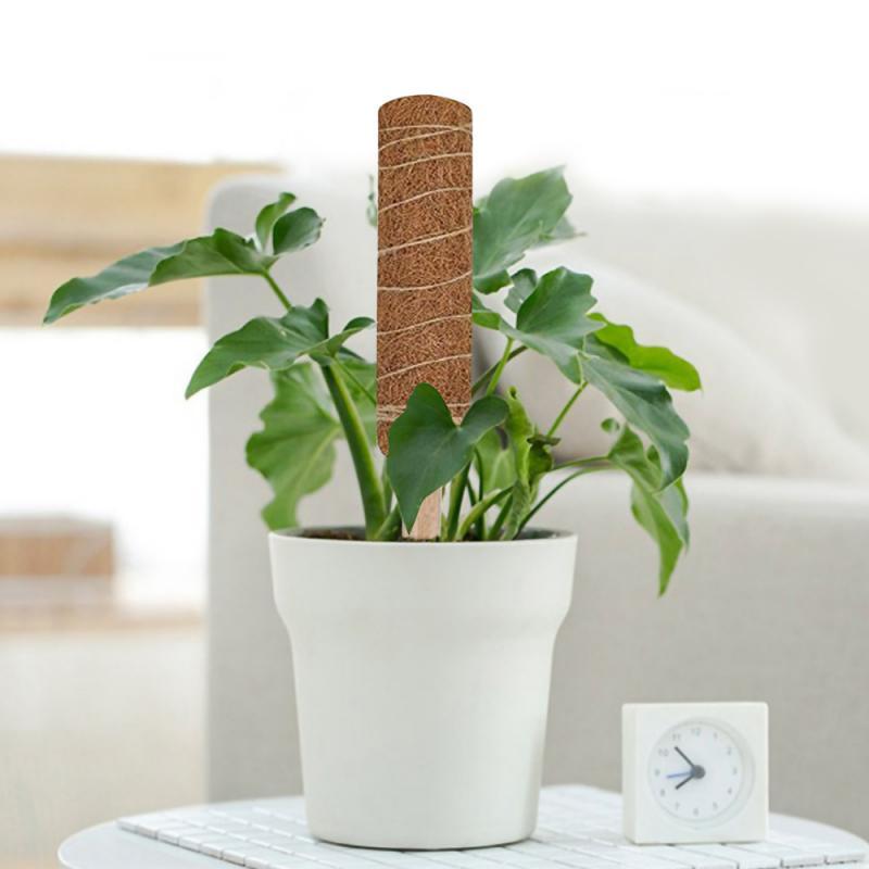 Kletterpflanzen VENTDOUCE Coir Totem Pole Coir Moss Totem Pole Coir Moss Stick f/ür Plant Support Extension Creepers