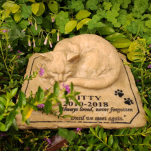 Stones Grave-Markers Pet-Memorial Personalized for Garden-Backyard Name-Date Outdoors