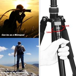 Image 3 - تبادل لاطلاق النار المهنية المحمولة السفر كاميرا ترايبود سبائك الألومنيوم 4 أقسام حامل ثلاثي القوائم لكانون نيكون SLR DSLR كاميرا رقمية