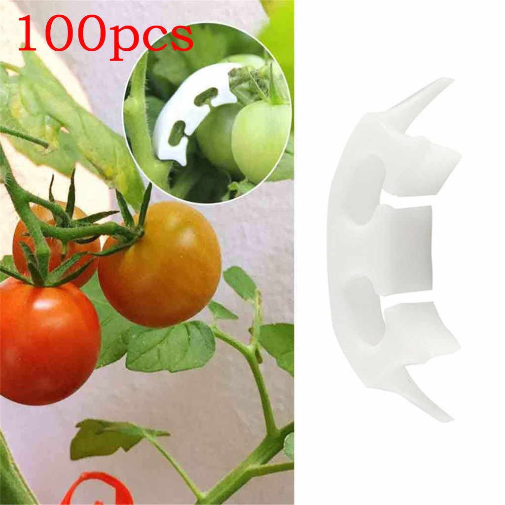 100Pcs Garden Vegetables Tomato Vine Stalks Grow Upright Support Plant Clips Lot