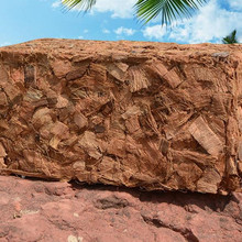 500g Organic Coco Peat Brick Hydroponic Natural Growing Media Planter Bag Coir Fibre
