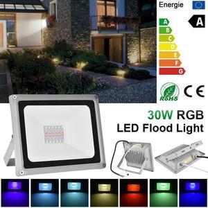 30W RGB LED Flood Light AC 220