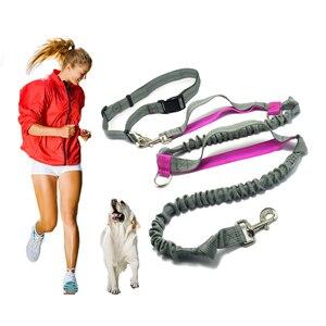 Image 2 - Pet product Hondenlijn Running belt Jogging Sport Verstelbare Nylon Hond touw Met Reflecterende Strip Pet Accessoires Handen Gratis