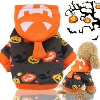 Halloween Costume 1