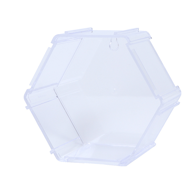 New! 10 Colors Acrylic Display Case Storage Case Box Show Case For Doll Model Collectibles 6