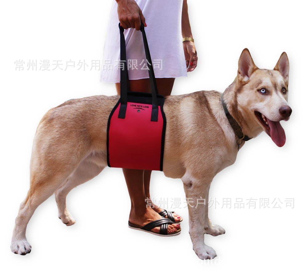 Hot Selling Mention Dog Traction Rope-Hand Pet Diaper Bag Dog's Straps