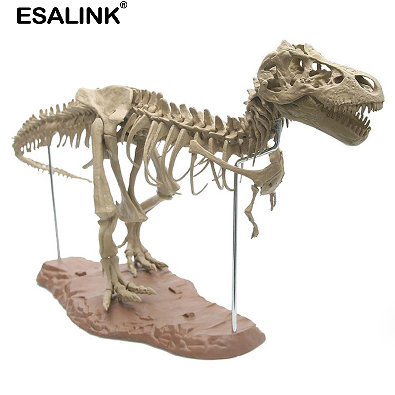 ESALINK 4D 70CM Animal Model Toys Simulation Large Dinosaur Fossil Tyrannosaurus Assemble The Skeleton Model Toys Stitching Toys
