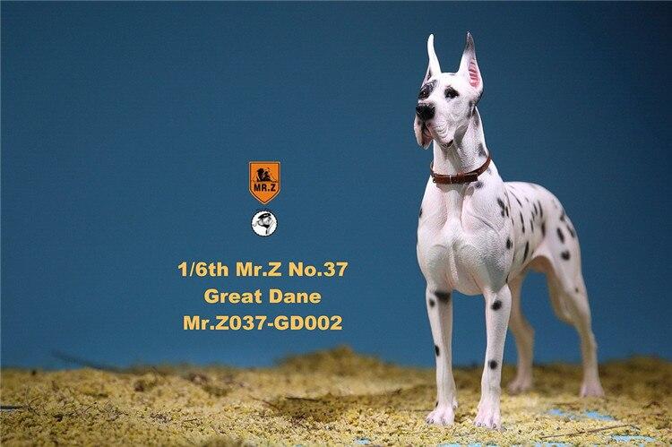 In Lager 1/6 Szene Zubehör Mr. Z MRZ037 Die Deutsch Great Dane 6 farben Haustier Hund Modell Tier Abbildung Modell Spielzeug für 12 ''Körper - 2