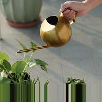 1000ml Stainless Steel Watering Can Fleshy Watering Kettle Gold Color Long Mouth Garden Watering Pot