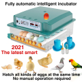 chicken brooder incubator automatic egg incubator brooding machine chick incubator home incubator controller farm 36 Eggs