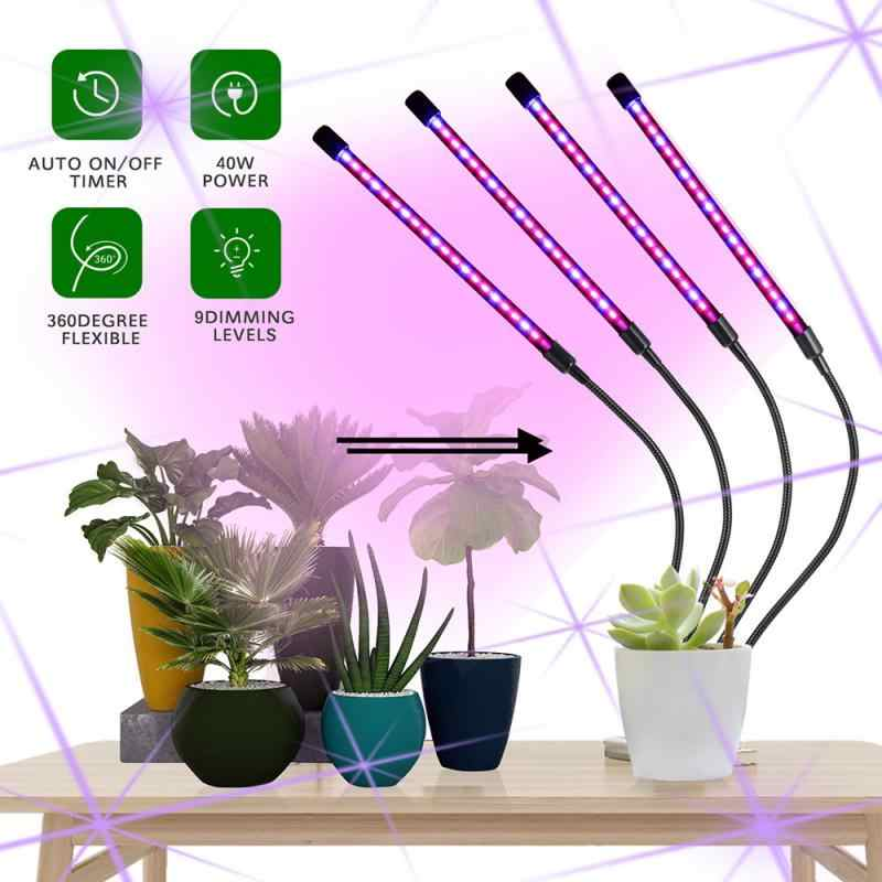 DEL Grow Light USB Phyto Lampe spectre complet fitolampy avec contrôle