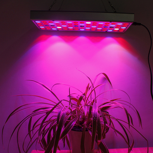 Image 5 - Full Spectrum Phytolamps 25W 45W LED Grow Light Growing Lamps AC85 265V Plant Lights Fitolampy For Seedling Plants Flowers