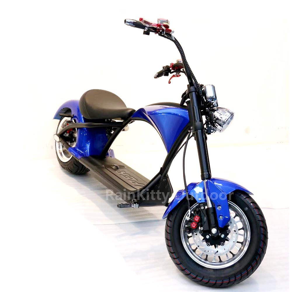 Electric Scooter Fat Tire Scooter M1 2000W 60V 20AH