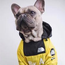 Buldog francuski wiatroszczelny list nowy projektant pies ubrania dla małych psów luksusowe bluzy szczeniak zwierze domowe akcesoria kurtka płaszcz zimowy tanie tanio CN (pochodzenie) Poliester Jesień zima Waterproof fashion Sport Support Pet dog hoodies clothes Cat dog Windproof