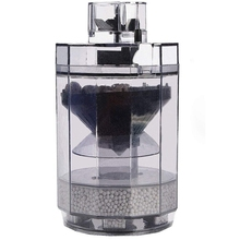 Aquarium Fishes and Other Small Wastes Into the Container for Fish Tank Waste Cleaner Fishes Aquarium Cleaner genotoxic potential in fishes
